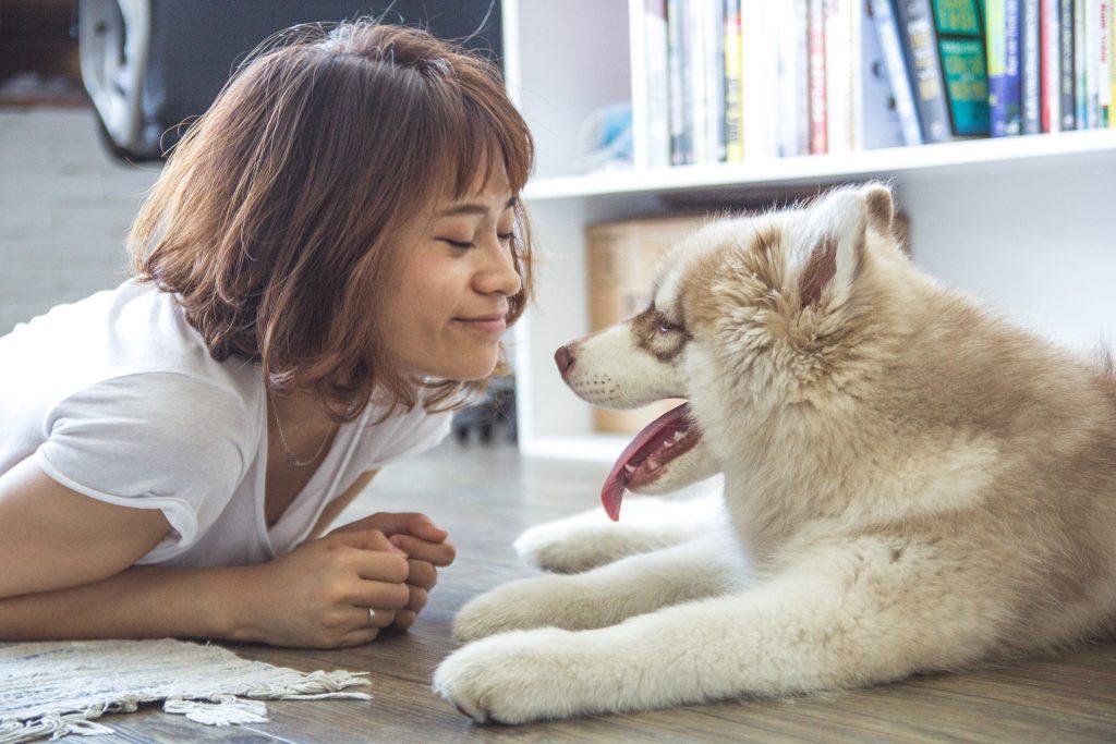 Cada vez hay más empresas para mascotas en la Bolsa.