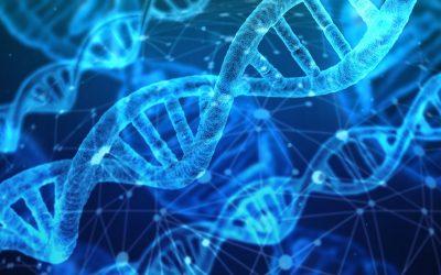 [SGMO] Sangamo Está A La Vanguardia En Terapias Genéticas – Hyenuk Chu