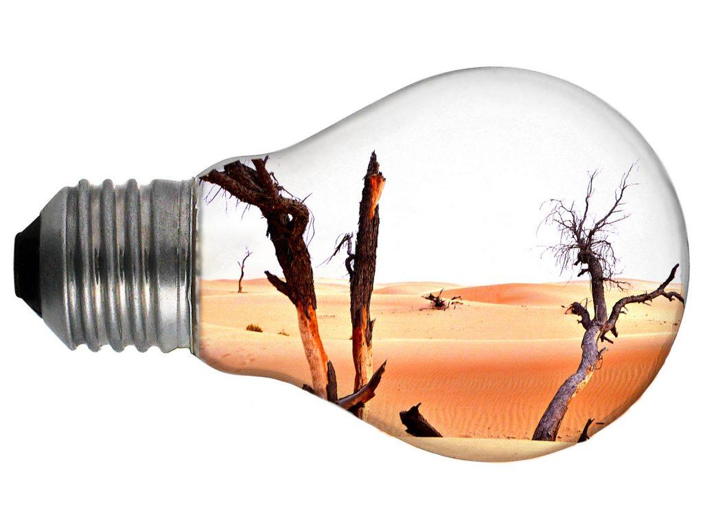 Hay empresas sostenibles y otras que destruyen el planeta - Hyenuk Chu