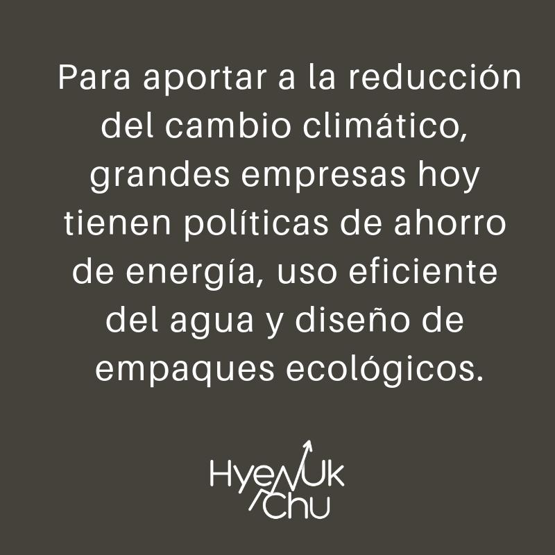 Estrategia de las empresas sostenibles - Hyenuk Chu