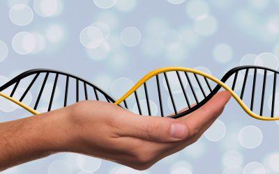 Cómo Ganar Dinero Podría Depender De Tus Genes – Hyenuk Chu