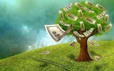 Los Dividendos Y Su Efecto Sobre El Precio De Las Acciones – Hyenuk Chu
