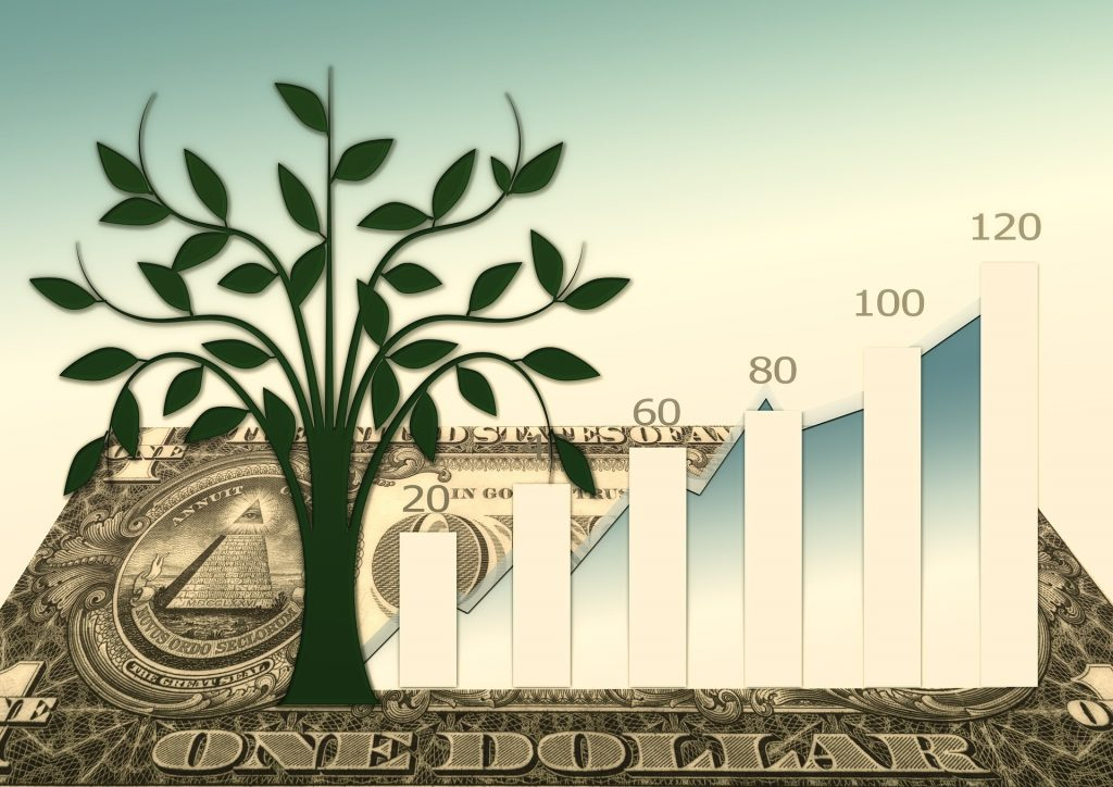 Presupuesto, finanzas y crisis- Hyenuk Chu