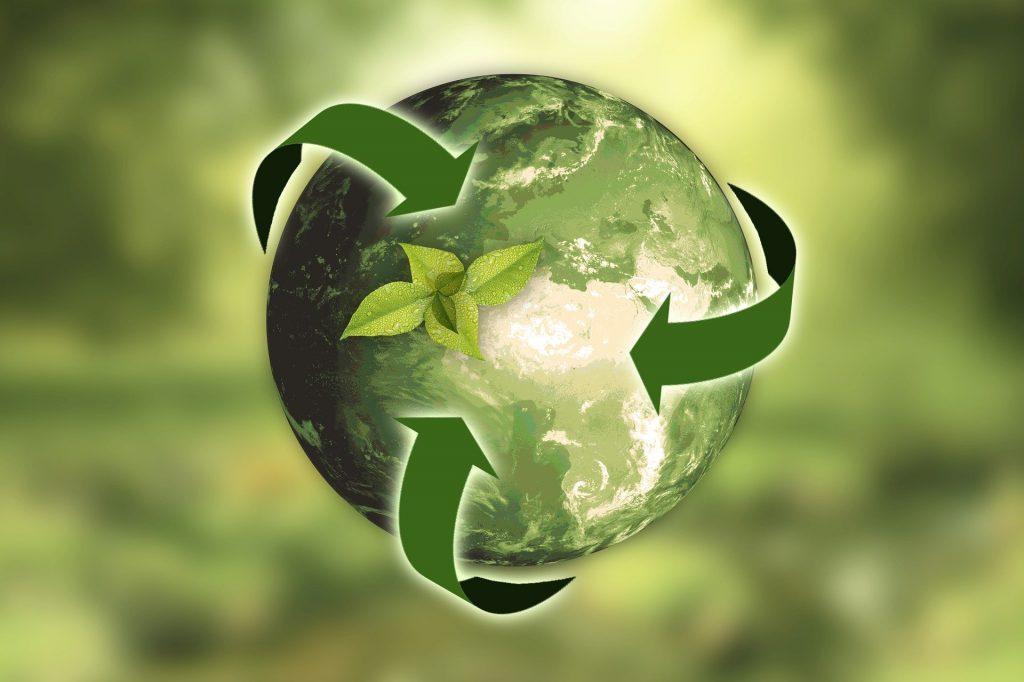 Los earnings de Tesla tienen que ver con el medio ambiente - Hyenuk Chu