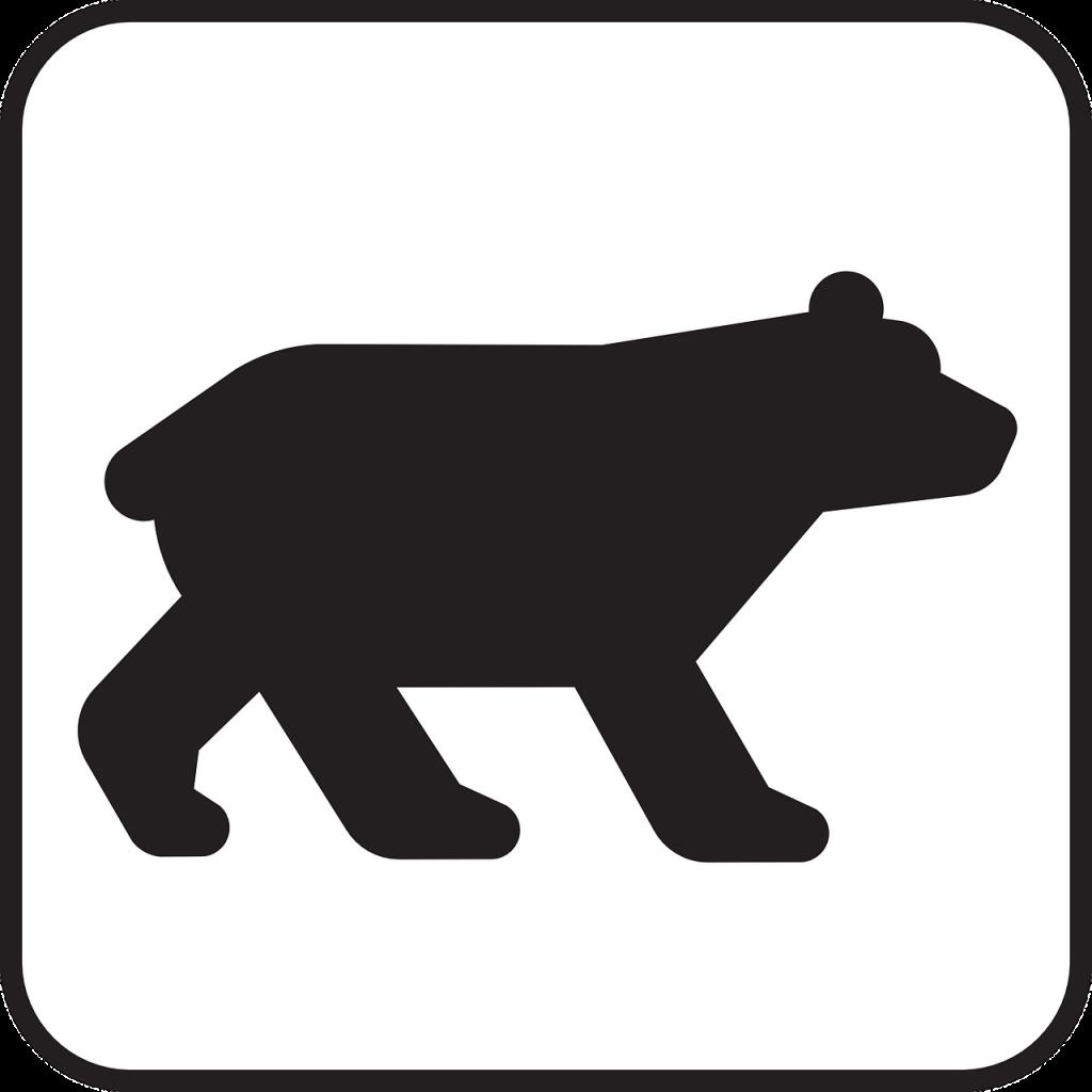 El crash en la Bolsa De Valores y el mercado bear van de la mano - Hyenuk Chu