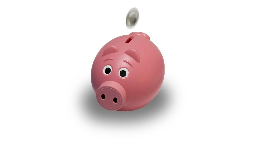 Eres rico o pobre según tus neurofinanzas – Hyenuk Chu Foto: Pixabay
