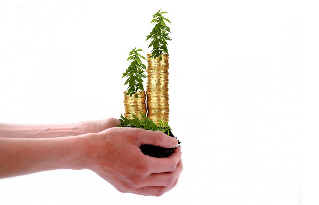 Aplica estos cinco tips de ahorro e inversión en 2021 – Hyenuk Chu Foto: Pixabay