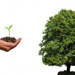 ¿Por qué invertir sistemáticamente?
